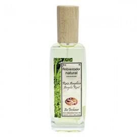 Ambientador Pulverizador - Raiz Angelica - S&S - 100 ml